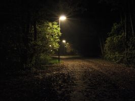 At night by Inilein