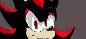 Shadow the Hedgehog by manicgirl155