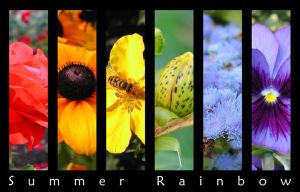 Summer rainbow by chain
