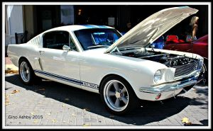 Mustang G.T.350 by StallionDesigns