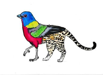 Painted bunting + ocelot gryphon by icedragon78970