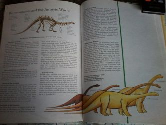 Facts about Brontosaurus by nickthetrex