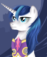 Shining Armor portrait by WourDeLuck