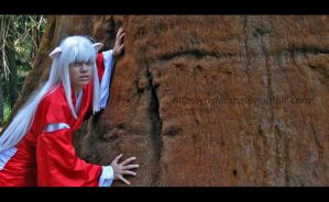 New ID-inuyasha by YoshiFHP