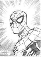 Spider-Man Sketch by LostonWallace