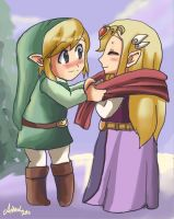 toon link and zelda by Arkel-chan