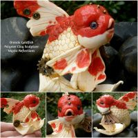 Red and White Oranda goldfish by MysticReflections