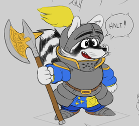 Racoon Guard color flats by LeWalou