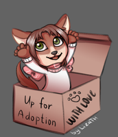 Up for adoption by lizathehedgehog