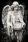 Weeping Angel by TheArtOfaMadMan