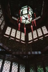 chinese lantern by chasing-sandcastles