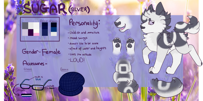 Sugar's (Silver) Reference Sheet by TheSilverShadowK9