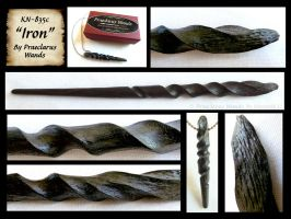 Iron - Wand Details by PraeclarusWands