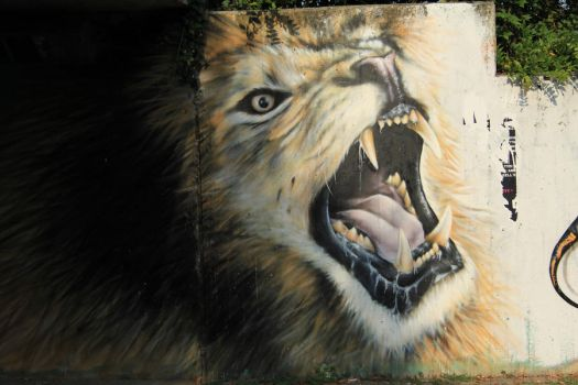 Lion by Photosesto