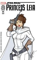 Princess Leia Cover by Inspector97