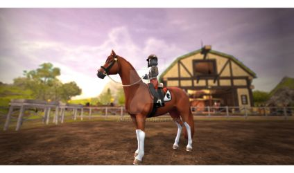 Star Stable Online - New horse in stables by Amisuri