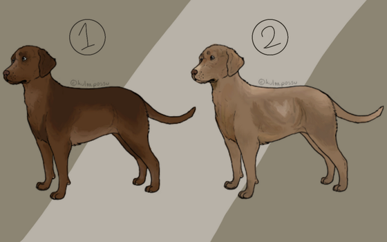 Dog Adopts 2/2 Open! by Paradise--Adopts