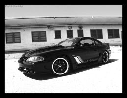 Mustang GT by NitzkaPhotography