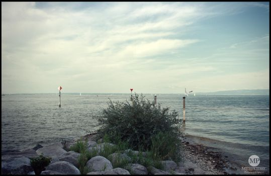 Bodensee by MiusaPictures
