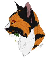 Muskratfur Headshot -Color Only- by Dictator-Wolfeye