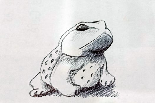 Little Toad by zebarnabe
