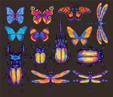 insects by Ramonova