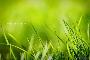 The Green Kingdom by theaudioslave