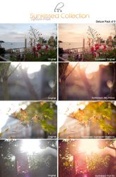 Sunkissed Collection for LIGHTROOM by Lady-Tori
