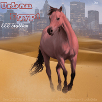 Urban Egypt by SeaHeartStables