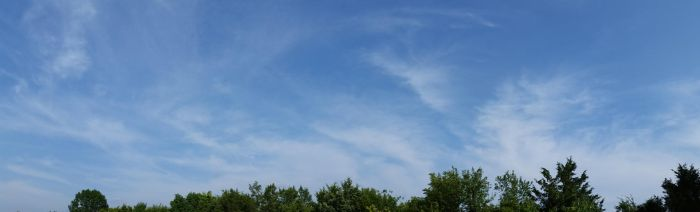 Soft Blue Sky with Trees by DonnaMarie113
