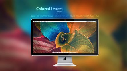 Colored Leaves wallpaper by Martz90