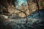 Arch in the Canyon by AnthonyPresley