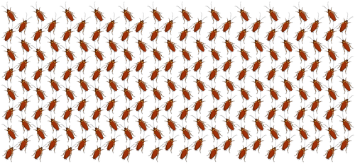 Wallpaper Design Cockroaches by MisterBug