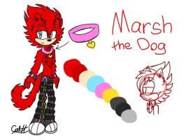 Marsh the Dog by CatHedgehog