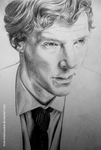 Cumberbatch wip by love-a-lad-insane