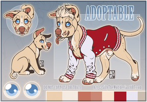 [Adoptable] .: Golden Pitbull :. [Auction: CLOSED] by SillyTheWolf