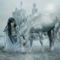 The Maiden's Horse by EnchantedWhispersArt