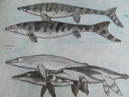 Mosasaurs and pliosaurs by RaptorGorilla