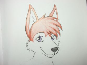 Anthro Husky Puppy by LadyFatality