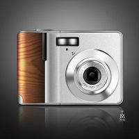 Digital Camera With Wooden Accents by tashamille