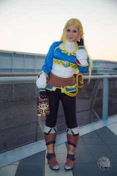 Zelda Cosplay Breath Of The Wild by GiuliaZelda