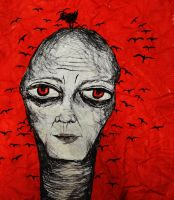 Illusion by StrangerLyri