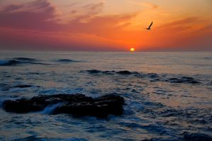 Sunset at La Jolla Cove by esee