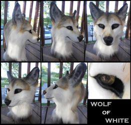 Wolf of White by Sharpe19