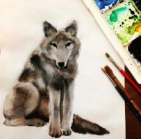 Watercolour Wolf  by devonlyx