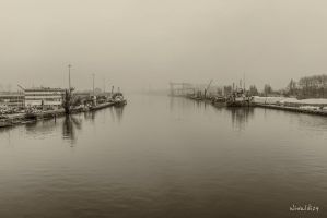 Fog over the river by wiwaldi24