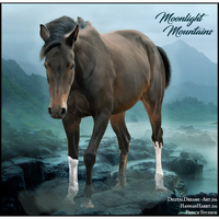 Moonlight Mountain by Prince-Studios