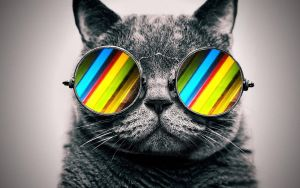Cool Cat: Stripes by ToValhalla