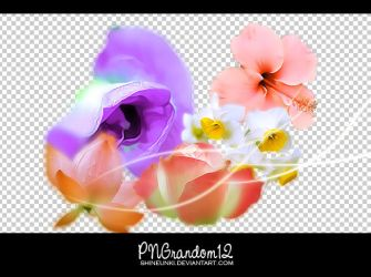 png random 12 by shineunki