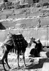 Taking Care of Each Other by egyptians
